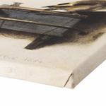 Het Puttertje van Carel Fabritius