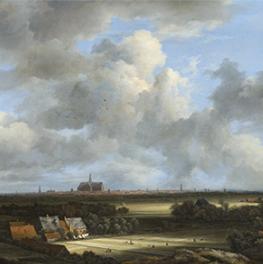 Gezicht Op Haarlem met Bleekvelden op canvas