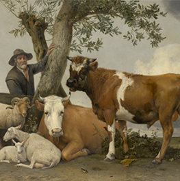 De stier op canvas