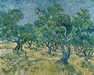 Afbeelding van onze reproductie van Olijfgaard by Vincent van Gogh op canvas, klein
