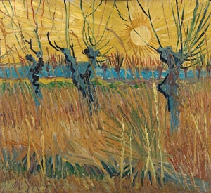 Afbeelding van onze reproductie van Knotwilgen bij zonsondergang by Vincent van Gogh op canvas, klein